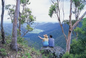Lamington National Park on the Gold Coast.