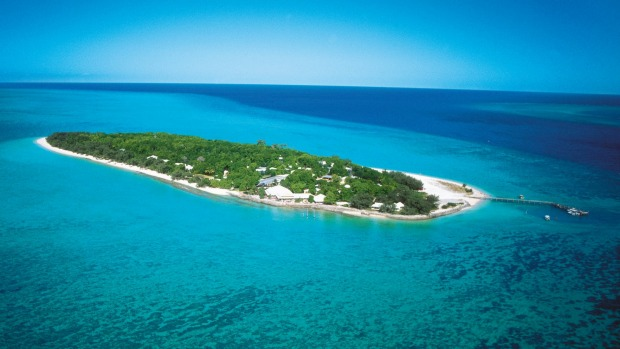 Nature gets priority on Heron Island.