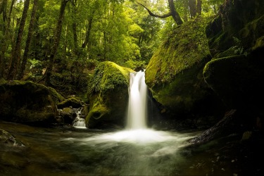Lower Chasm Falls - Tasmania. I travelled to Chasm falls alone, across the fallen bridge and along the eerie overgrown ...