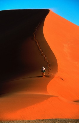 On the sand dunes, Namib Desert, Namibia.