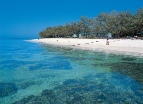 Lady Elliot Island, sometimes known as 'Manta Heaven', at the southernmost point of the Great Barrier Reef.
