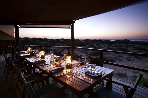 Wallaroo at Sal Salis: Ningaloo reef out front, wild bush out back and 16 eco-luxe tents scattered between, Sal Salis is ...