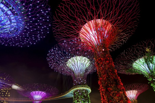 The Supertree Grove comes alive at Gardens by the Bay in Singapore.