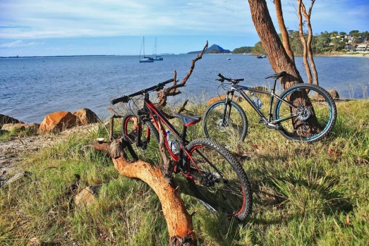 From cycling along coastal tracks to wildlife watching, here are 20 of the best reasons to visit Port Stephens.