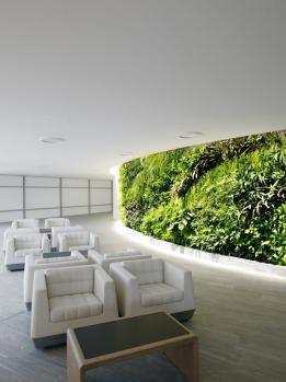 Qantas First class Lounge entrance - Australian designer Marc Newson's began the interior green walls trend here.