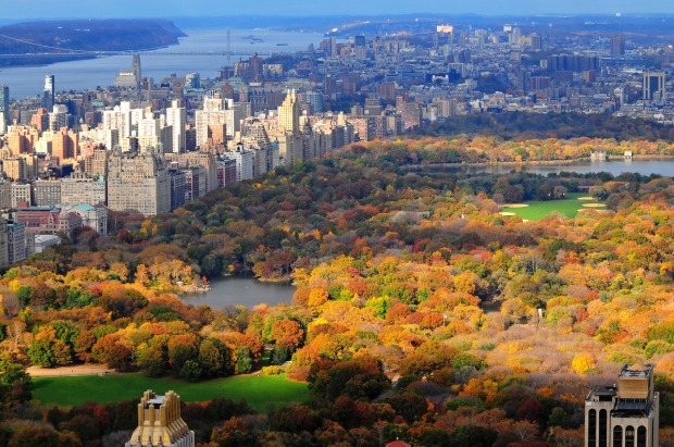 Central Park, New York: Drawing 42 million visitors each year, it's hardly shocking it's the ten most checked-in place ...