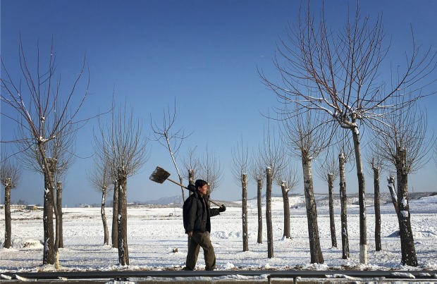 A North Korean man carries his shovel where he was clearing snow from along a main road, as he walks past farm fields ...
