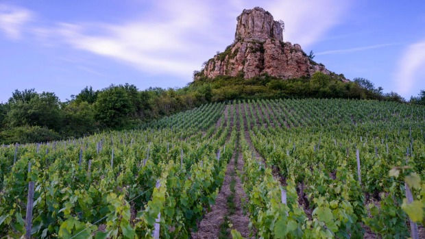 Solutre Rock, with Pouilly Fuisse vineyard at the foot of the rock.