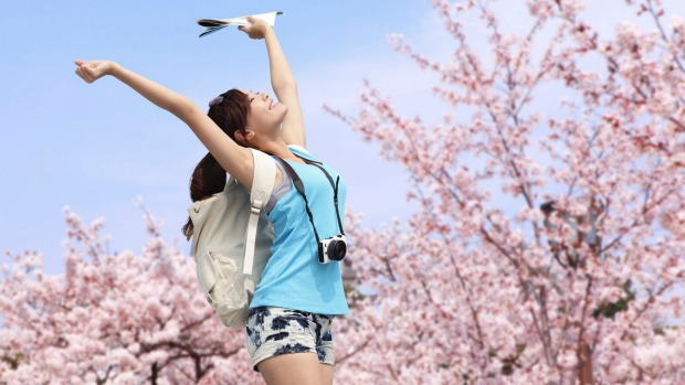 Cherry blossom season in Japan. Traveller.com.au's readers were more interested in Japan than any other destination in 2015.
