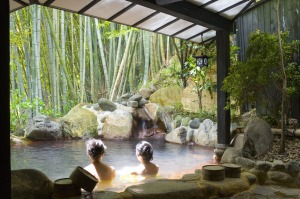 The Japanese experience: A tradtional onsen hot spring resort in Japan.