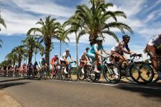 Santos Tour Down Under - Stage 1 - Nuriootpa to Angaston. Seppeltsfield, Barossa South Australia Images supplied by ...