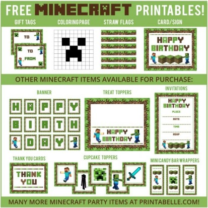 image about Minecraft Birthday Banner Free Printable named How towards toss a Minecraft celebration