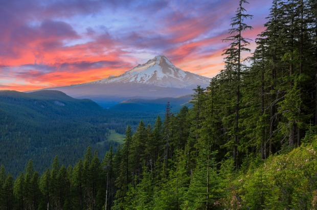 Mt. Hood on a bright, colourful sunset during the summer months.