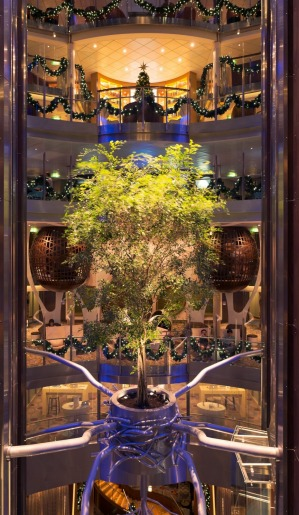 Celebrity Reflection living Ficus tree in the ship's central atrium.
