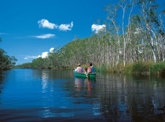 The Noosa Everglades, Queensland.