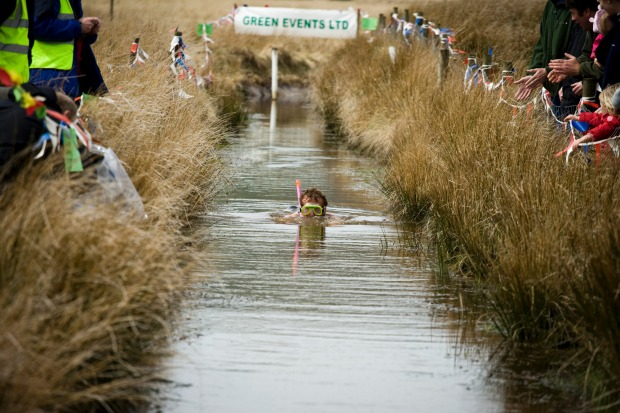 Cheering on a bog snorkeller in Wales.
