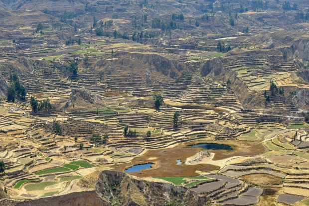 Colca Canyon (Peru): More than twice as deep as the Grand Canyon, the much-visited Colca Canyon is famed for the Andean ...