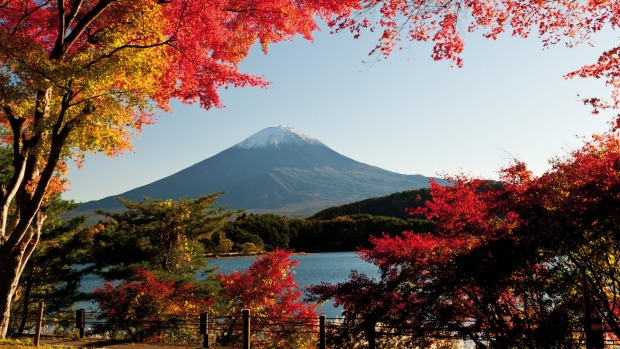 Watching the seasons change is one of the joys of visiting Japan in the off-season.