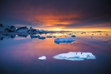In December last year, I finally visited Antarctica after years of dreaming about it. One evening halfway through the ...