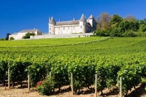 The French countryside is raked with vineyards.