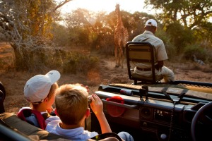 Seeing a giraffe from a safari land cruiser in the Phinda Game Reserve.