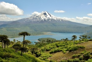 Hiking in Conguillo National Park, located in the Andes in Chile, was like being transported back to a prehistoric ...
