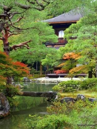 Utter Serenity Mt Koya San is a beautiful mountain in Japan where temples abound and autumn colours leap out against the ...