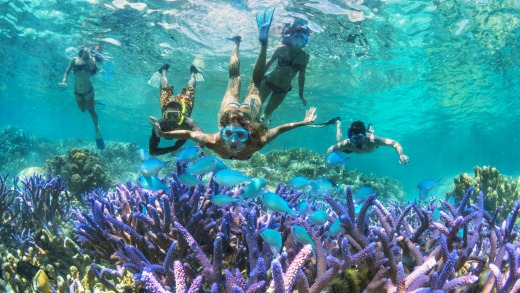 Snorkelling New Caledonia.