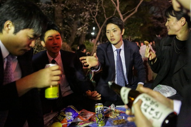 People enjoy  time with colleagues under the cherry blossoms trees at Ueno park in Tokyo, Japan.  During cherry blossom ...