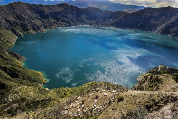 A sheep farm at the top of the 280 metre descent to the crater of Quilotoa, Ecuador.