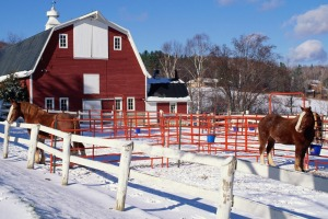 As the poet Robert P. T. Coffin wrote, the barns in Vermont are indeed bright red.