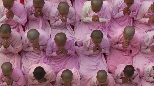 Young nuns in prayer, Myanmar.