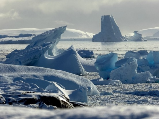 Charcot Landing, Antartica. The icebergs become trapped in this bay creating this otherworldly scene.
