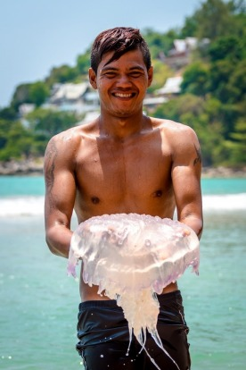The locals of Kamala Beach, Phuket seem to love the jellyfish, seeking them out each day and popping them in plastic ...