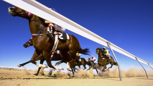 The field rounds the bend onto the final straight in the Birdsville Cup.