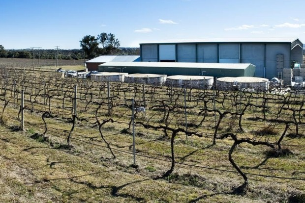 Eden Road Wines: The newest kid on the block has not missed a beat since it won the Jimmy Watson Trophy for its first ...