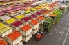 The Aalsmeer Flower Auction building, Netherlands: Floor space is not the only measurement – footprint is another. And ...