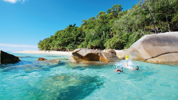 Snorkellers enjoy the waters around Fitzroy Island that teem with fish, soft corals and the occasional turtle.
