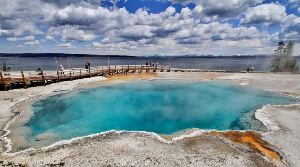 Although small, West Thumb Geyser Basin, located along the shore of Yellowstone Lake, was the most scenic geyser basin ...