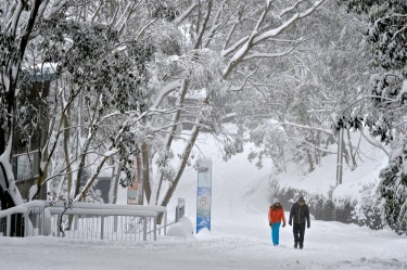 Anthony O'shea of Falls Creek Ski Lifts said: 'People talk about 2014 as one of the best season opening storms ever, but ...