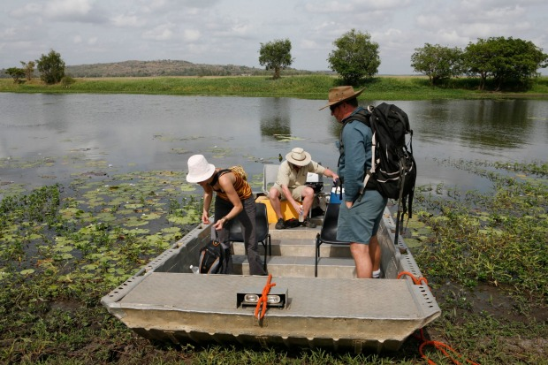 CANAPES WITH CROCODILES, MOUNT BORRADAIL: Wildlife trip in nature reserve close to Mount Borradaile, holy mountain of ...