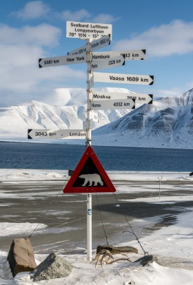 Polar bear crossing with signs of distances to major cities around the world near Logyearbyen airport.