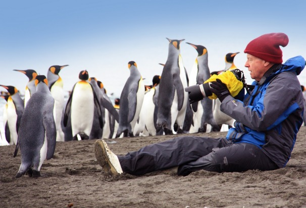 Photographing the penguins with Aurora Expeditions.