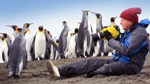 Photographing penguins with Aurora Expeditions.
