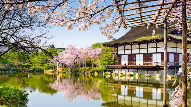 Travel Deals Save 500 On 17 Night Japan Tour With Flights