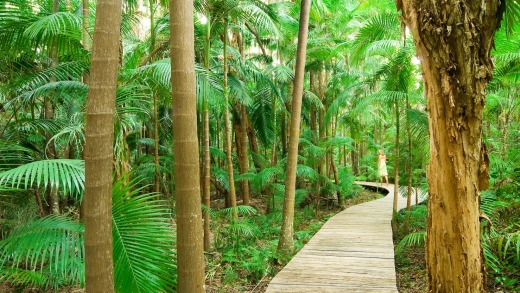 The boardwalk to your room at the Byron at Byron.