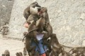 Man mobbed by monkeys turned into a funny internet memes