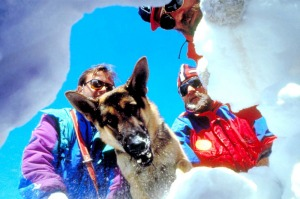 Before you go skiing, it's a good idea to get yourself familiar with avalanche awareness.