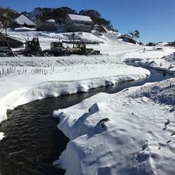Perisher awesome as always.