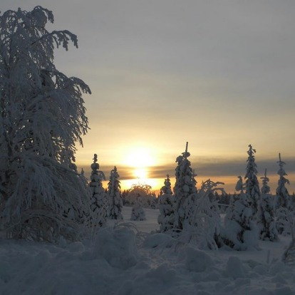 Middle of the day in Lapland.